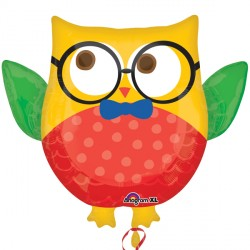 HIP HIP HOORAY GRAD OWL SHAPE P30 PKT