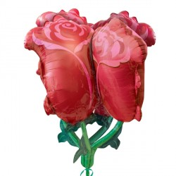 RED ROSES ULTRA SHAPE P60 PKT