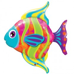 "FASHIONABLE FISH 43"" SHAPE GROUP B PKT"