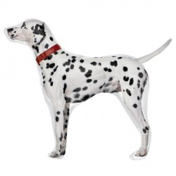 "DALMATIAN STREET TREAT SHAPE FLAT (32"" x 26"") (10CT)"