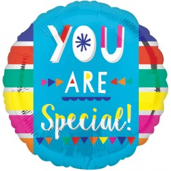 YOU ARE SPECIAL STANDARD S40 PKT