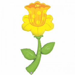 "DAFFODIL 60"" FRESH PICKS SHAPE PKT"