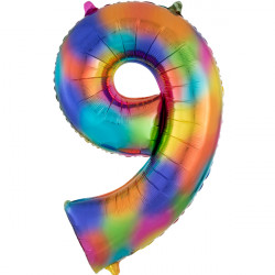 "RAINBOW SPLASH NUMBER 9 SHAPE P50 PKT (22"" x 34"")"
