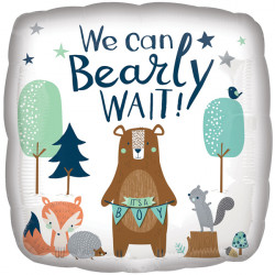 WE CAN BEARLY WAIT STANDARD S40 PKT