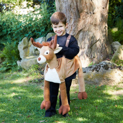 REINDEER RIDE ON AGE 3+ ONE SIZE
