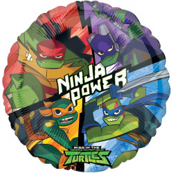 RISE OF THE TMNT STANDARD S60 PKT