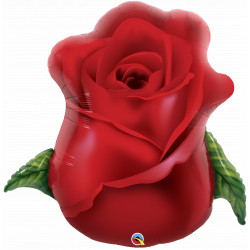 "RED ROSE BUD 33"" SHAPE GROUP C PKT YZP"