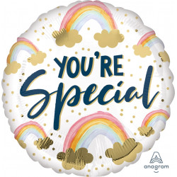 PAINTED RAINBOWS YOU'RE SPECIAL STANDARD S40 PKT