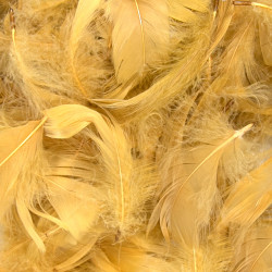 GOLD ELEGANZA FEATHERS MIXED SIZES 50G