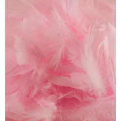 LIGHT PINK ELEGANZA FEATHERS MIXED SIZES 50G
