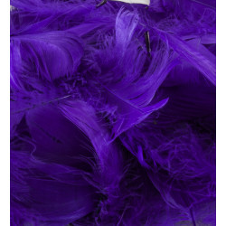 PURPLE ELEGANZA FEATHERS MIXED SIZES 50G