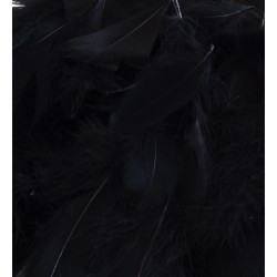 BLACK ELEGANZA FEATHERS MIXED SIZES 50G