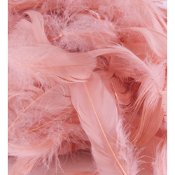 ROSE GOLD ELEGANZA FEATHERS MIXED SIZES 50G