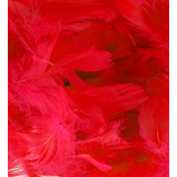 RED ELEGANZA FEATHERS MIXED SIZES 50G