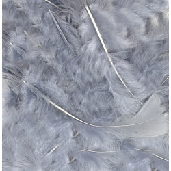 SILVER ELEGANZA FEATHERS MIXED SIZES 50G