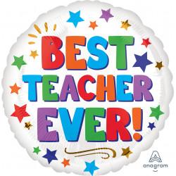 BEST TEACHER EVER STANDARD S40 PKT